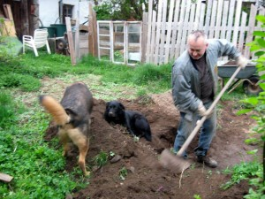 Teichbau mit Helfern