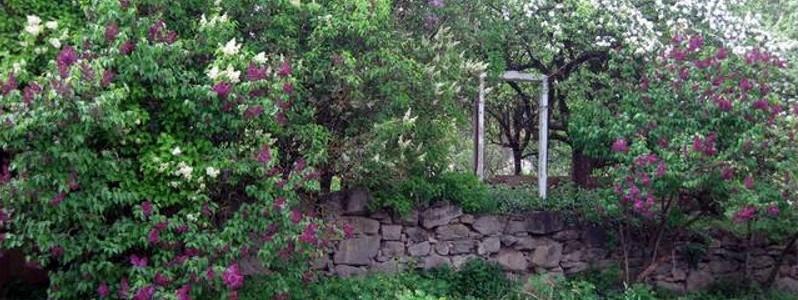 Steinmauer im Garten mit Energietor
