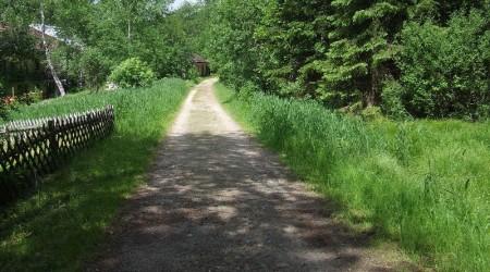 Am Zwiesler Waldhaus entlang
