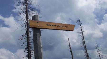 Windwurf-Erlebnisweg