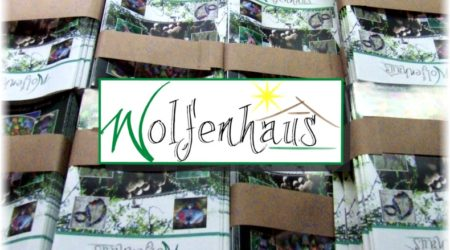 Neues Logo und Broschüre