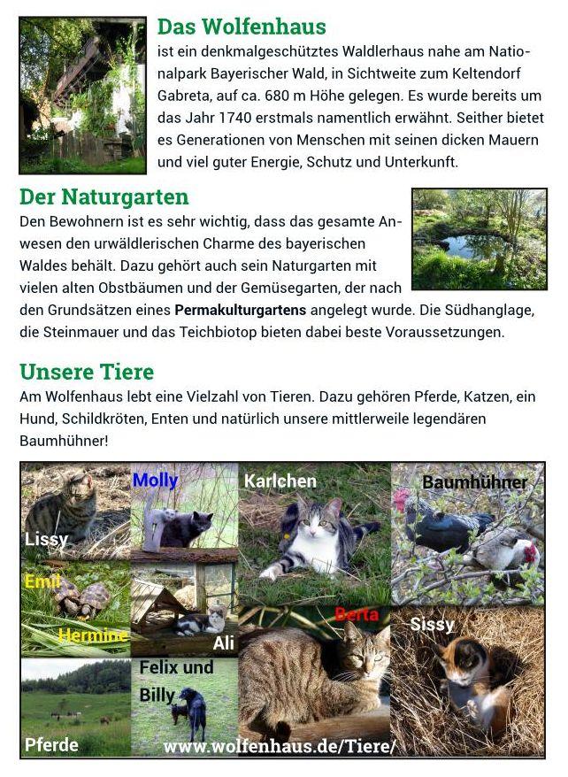 Seite 2 - Wolfenhausbroschüre